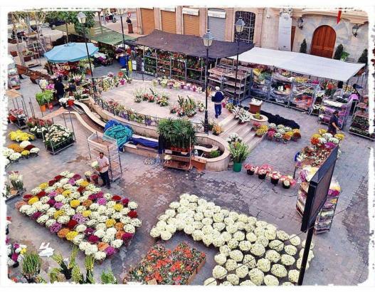Neben Palma läuft auch In den Orten der Insel wie hier in Inca der Blumenverkauf für Allerheiligen auf Hochtouren. Foto: @pintur