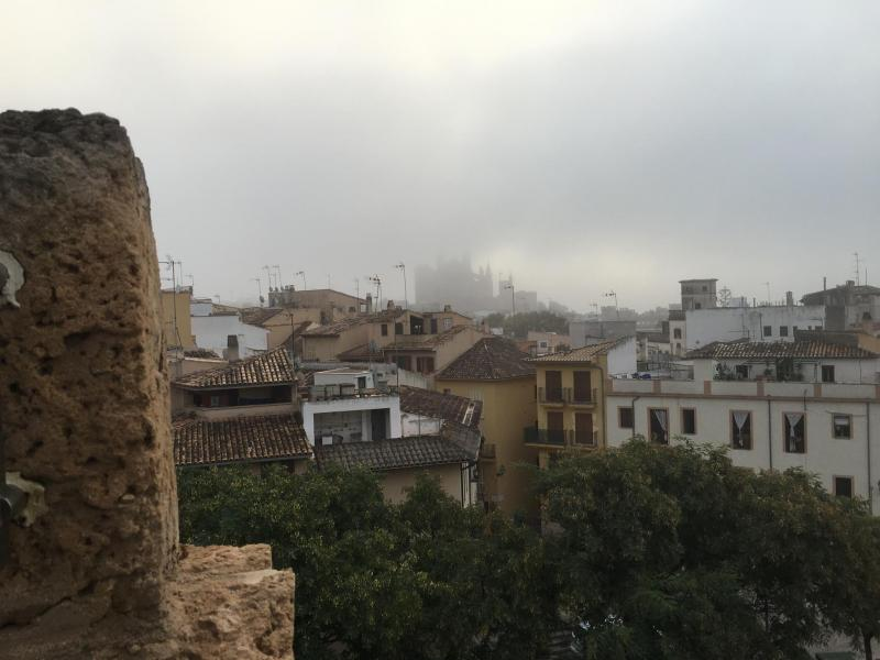 Blick vom Es Baluard Museum in Richtung Kathedrale.