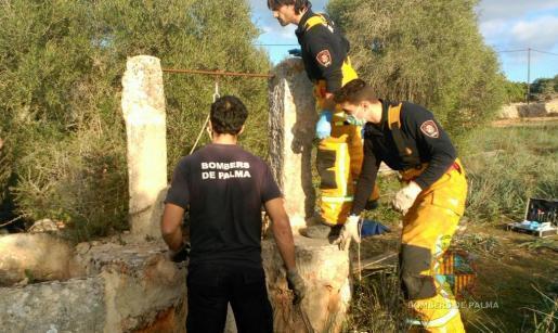 Feuerwehrleute mussten den Toten bergen.