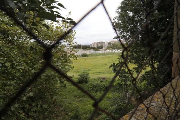 Diese Aufnahme vom Oktober zeigt die ehemalige Hunderennbahn in Palma.