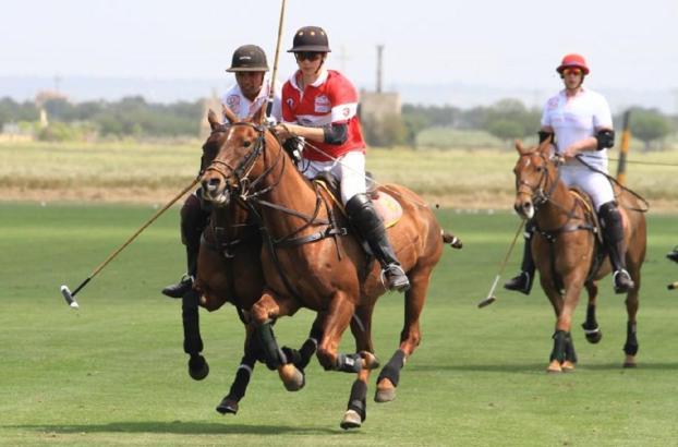 Das Polo-Feld in Campos im Süden von Mallorca soll ausgebaut werden.