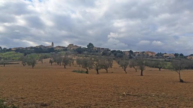 Alle Wanderrouten sollen verschiedene Teile des Gemeindegebiets in Costix im Herzen von Mallorca abdecken.