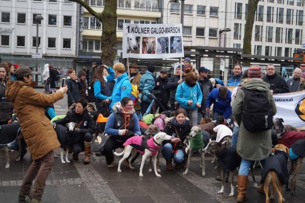 150 Hundehalter und ihre 200 Tiere gingen in Köln auf die Straße