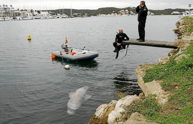 Fischer wurden auf den Hai in der Nähe der Küste von Mallorcas Schwesterinsel Menorca aufmerksam.