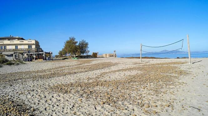 Am Strand von Son Serra de Marina im Norden von Mallorca will die Gemeinde Santa Margalida einen Strandkiosk errichten.