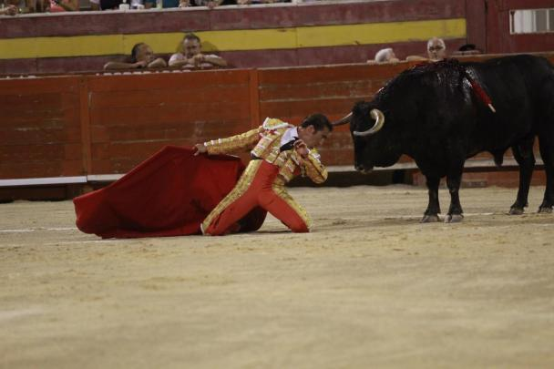 Stierkampf auf Mallorca – das ist bald Geschichte.