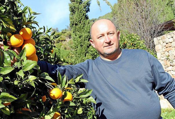Tomeu Arbona ist stolz auf seine Orangen. Leben kann aber auch der Landwirt aus Sóller nicht vom Anbau.
