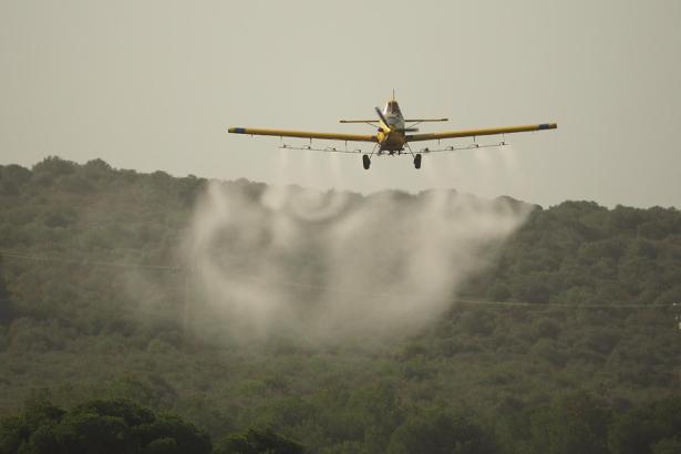 Ein Flugzeug lässt 2014 Insektizide über einem Waldgebiet auf Mallorca ab
