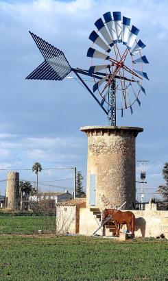 Nur noch wenige Windmühlen zum Heraufpumpen des Grundwassers sind in Betrieb, dienen den Landwirten zum Bewässern.