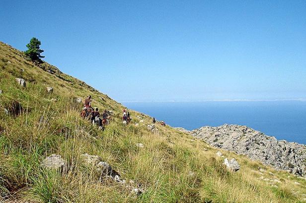 Mallorca bietet eine einmalige Mischung aus Meer und Bergen.