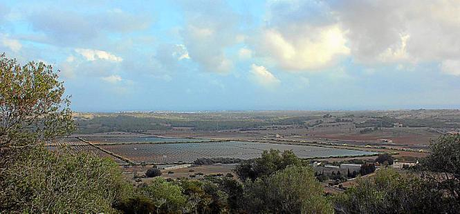 Zuletzt waren in Santa Cirga 197.000 Solarmodule geplant.