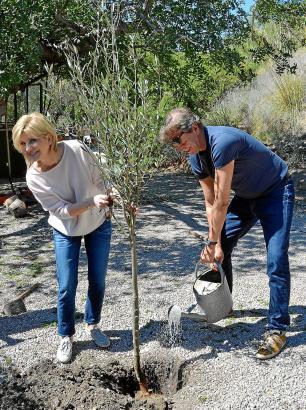 Der Erste von insgesamt 50: Carmen Nebel und ihr Lebensgefährte Norbert Endlich bei der Pflanz-Aktion auf dem Gelände der Agroto