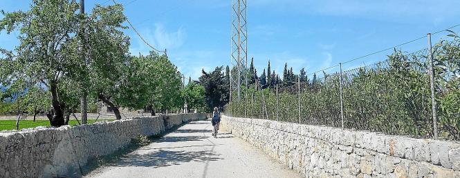 Sollen wieder in Schuss gebracht werden: Die Fahrradwege, die von Santa Eugènia nach Pollença  über mehrere Gemeinden von Mallor