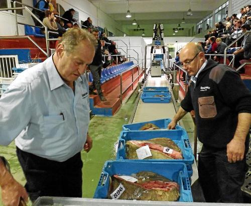 Mitarbeiter der Fischbörse bedecken den Fang sofort nach der Versteigerung wieder mit Eis, damit er frisch bleibt
