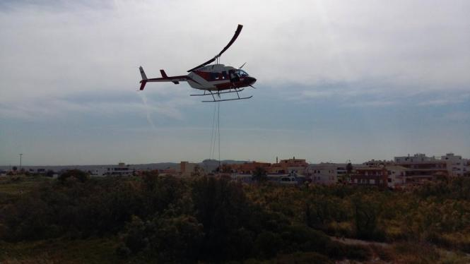 Von einem Hubschrauber aus wurde das betroffene Gebiet mit Chemikalien besprüht.