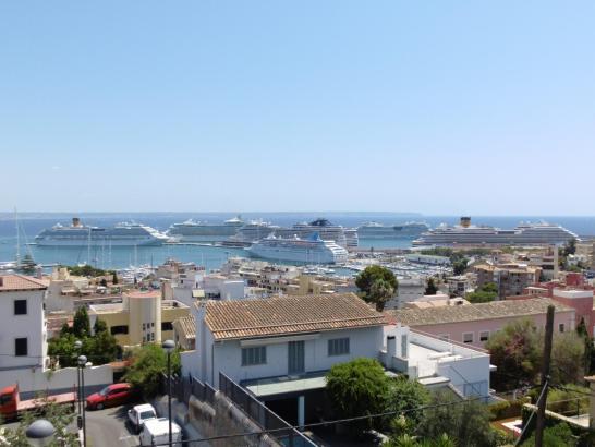 Insgesamt sieben Kreuzfahrtschiffe lagen am Dienstag im Hafen von Palma.