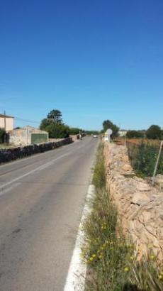 Der Vorfall ereignete sich auf der Landstraße zwischen Ses Salines und Colònia de Sant Jordi.