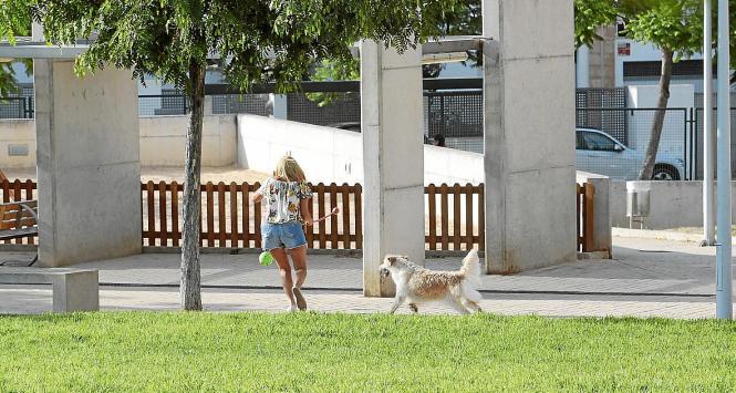 Eine junge Frau spielt außerhalb der vorgegebenen Zeiten mit ihrem Hund im Park