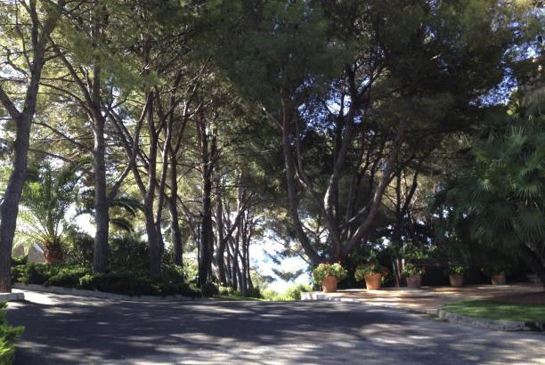 Von den 40.000 Quadratmetern Garten werden 9000 für die Öffentlichkeit zu besichtigen sein