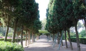 Während 9,5 Monaten werden die Marivent-Gärten fürs Publikum geöffnet bleiben.