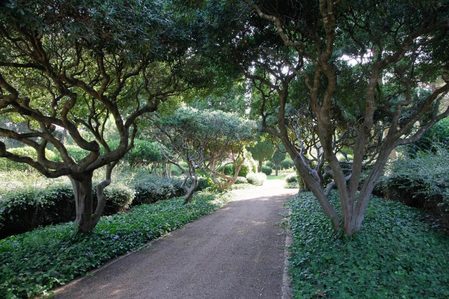 In der Osterwoche und zwischen Mitte Juli und Mitte September bleiben die Gärten geschlossen.