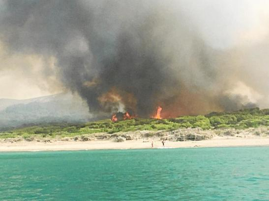 Der Waldbrand in Sa Canova hat die Gemeindeverwaltung und die Bevölkerung in Artà im Nordosten von Mallorca in Alarmbereitschaft