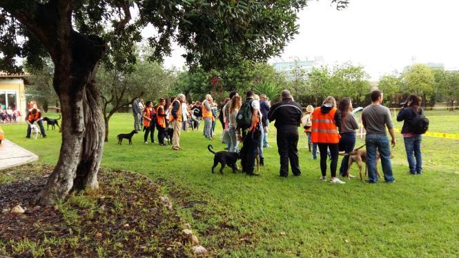 48 Freiwillige haben beim Tag der offenen Tür im Tierheim mitgeholfen