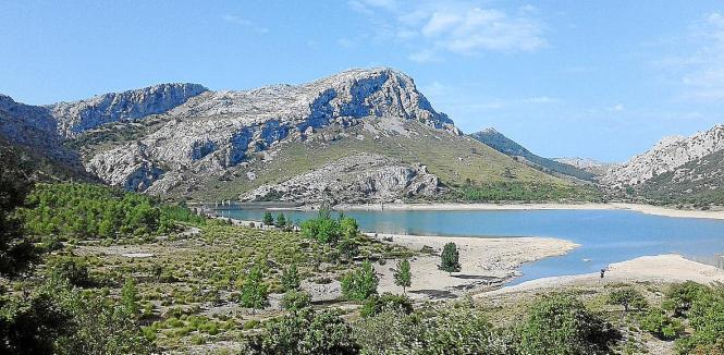 Das wird teuer: Um die nur noch zu einem Viertel gefüllten Stauseen nicht weiter zu belasten, setzt die Stadt Palma de Mallorca