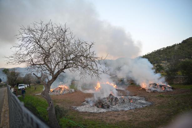 Viele Landwirte verbrennen auf Mallorca ihre Gartenabfälle.