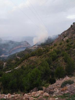 In der Mola de Tuent im Westen von Mallorca wütet seit Mittwochmorgen ein Waldbrand.