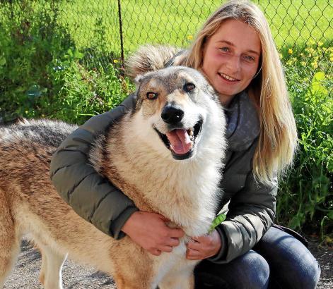 Lizz Handschmann und ihr sechsjähriger Rüde Louan suchen täglich nach dem zweiten Hund der jungen Frau