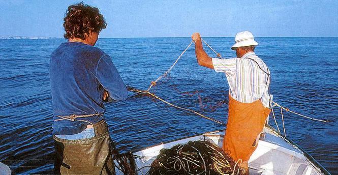 Die Fischer auf Mallorca und den Nachbarinseln haben keinen leichten Job.