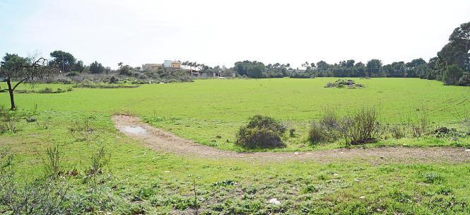 Ein großer Park für Bürger und Touristen soll dieses Gelände in Son Baulò werden.
