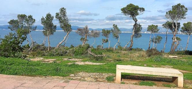 Die erste Meereslinie in Son Verí im Gemeindegebiet Llucmajor auf Mallorca.