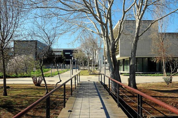 Der Parc Bit befindet sich am nördlichen Stadtrand von Palma, dort dominiert moderne Architektur