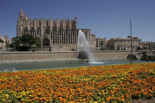 So soll es dieses Jahr vor der Kathedrale in Palma nicht mehr aussehen.