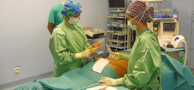 Dr. Esther Lliro bei einer Liposuktion in der Clínica Juaneda in Palma.