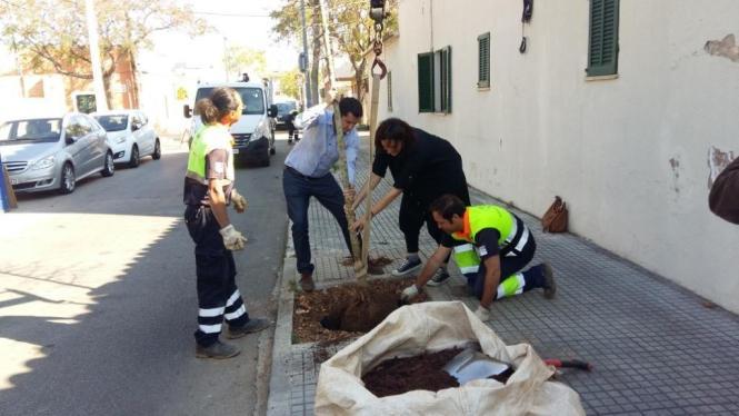 Dezernent Rodrigo Romero hat bei der Pflanzaktion auch selber mit Hand angelegt.