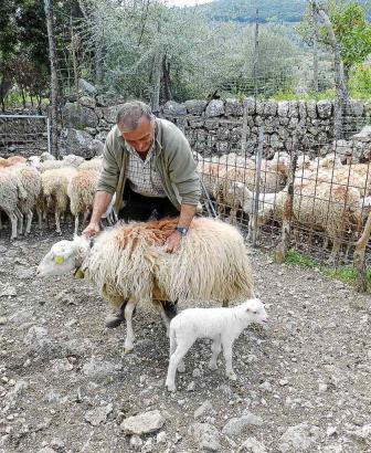 Martí Solivellas ist zufrieden über die Einigung der Landwirte