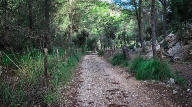 Die Leiche wurde am Sonntag in der Nähe der Höhle Avenc de Son Pou von Wanderern entdeckt worden.