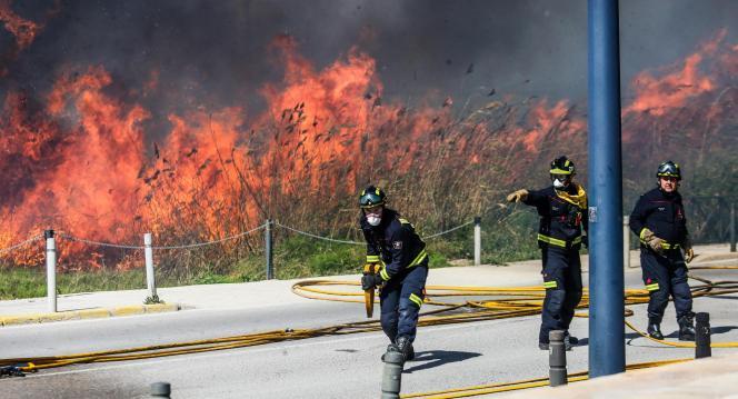 Feuerwehrkräfte, die einen Waldbrand auf Ibiza bekämpfen