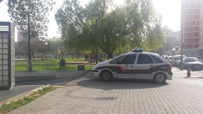 """Die Hunde-Attacke ereignete sich im """"Parc Llevant"""" an der Calle der Manacor."""