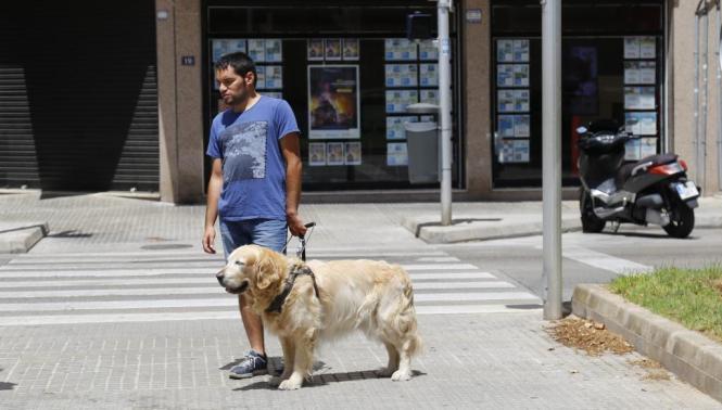 """José Marcos Ruiz mit seinem Blindenhund """"Jaguar"""" an der Unfallstelle in der Calle Manacor in Palma"""
