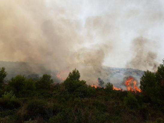 Die Rauchwolken waren in weiten Teilen Mallorcas zu sehen.