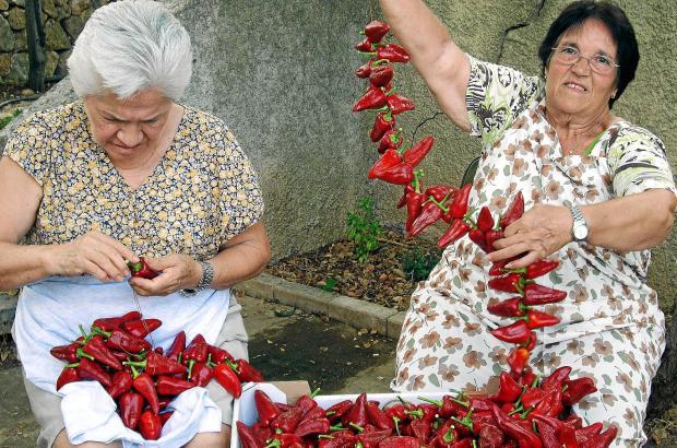 Diese Damen aus Santa Maria fädeln rote Paprikaschoten auf, um sie anschließend zum Trocknen aufhängen zu können.