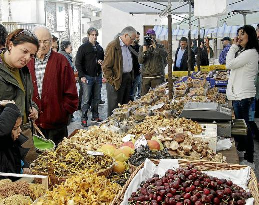 Pilze satt heißt es am 26. November auf der Pilzmesse in Mancor de la Vall.