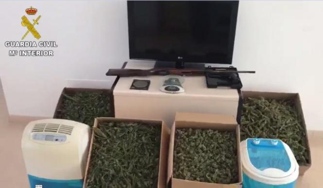 Von der Polizei sichergestelltes Diebesgut und Marihuana.