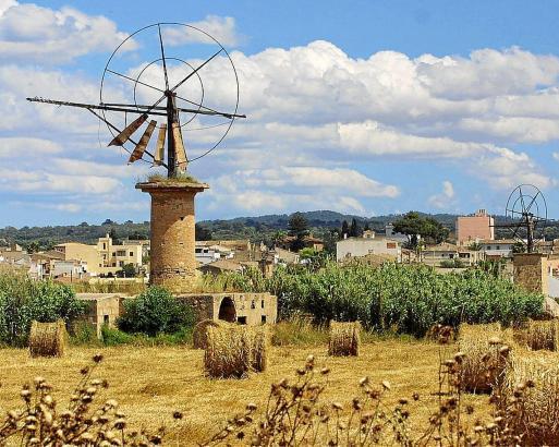 Windmühlen und Felder prägen das traditionelle Landschaftsbild im Umfeld des Flughafens von Palma de Mallorca.
