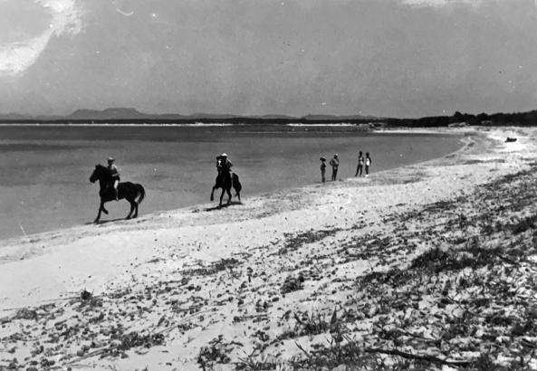 Galopp am menschenleeren Es-Trenc-Strand in den 1960er Jahren.