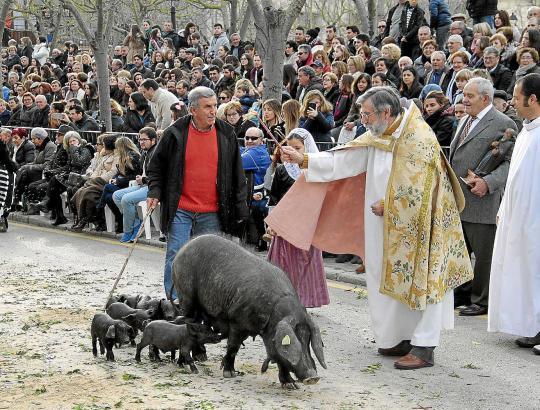 Kirchlicher Segen für das liebe Vieh.